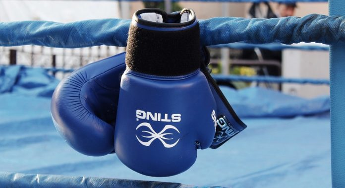 10 Best Boxing Gloves in 2019 - Reviews